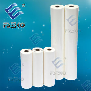BOPP Thermal Film with EVA Glue for Hot Printing (FSEKO-1512G) pictures & photos