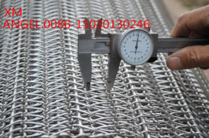 Stainless Steel Spiral Wire Conveyor Belts, Ss Covneyor Cesh Belting pictures & photos