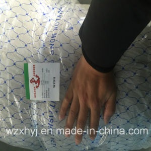 0.70mmx114.3mm Nylon Monofilament Fishing Net for New Zealand, Australia pictures & photos