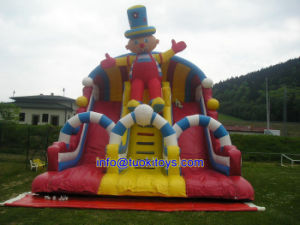 Dry Inflatable Slide Made in China (B006) pictures & photos