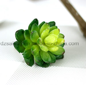 Decorative Plant Natural Touch Artificial Succulents Artificial Flower (SW17669)