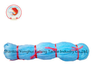 Nylon Monofilament Fishing Net with Light Blue Color pictures & photos
