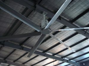 Healthy Envirment Big Industrial Fan