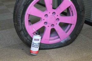 Aeropak All Range Tire Sealer & Inflator pictures & photos