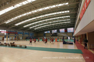 Indoor Sports Hall Light Steel Space Truss Roof pictures & photos
