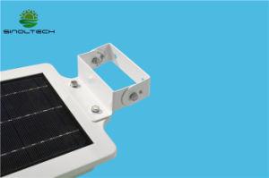 IP65 Motion Sensing 6W Solar LED Garden Light for Yard Lighting (SNSTY-206) pictures & photos