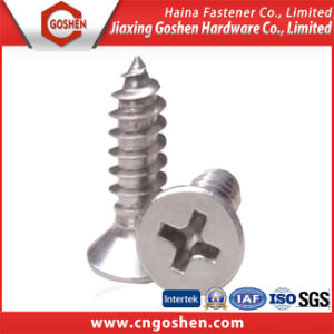 DIN965 Stainless Steel Cross Recessed Countersunk Head Screw pictures & photos