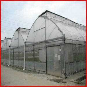 Agriculture Farm Multi Span Plastic Greenhouse Cover for Sale pictures & photos