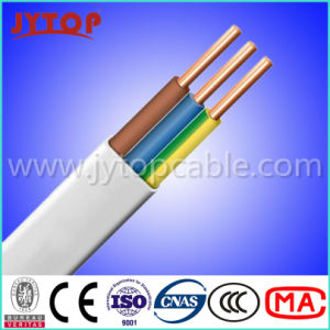 20+ Experience Factory for LV PVC Insulated Flat Wire pictures & photos