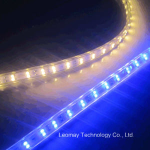 AC220V 5W/M SMD3528 100LEDs/M High Voltage LED Strip pictures & photos
