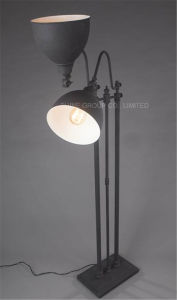 Phine Interior Decorative Metal Table/ Desk Lamp for Bedside pictures & photos