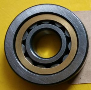 SKF/NSK/NTN/NACHI/Cylindrical Roller Bearing Nu406em pictures & photos