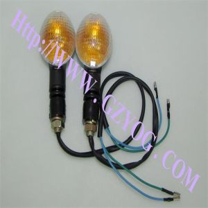 Yog Motorcycle Spare Parts High Quality Winker Lamps for Gxt-200b pictures & photos