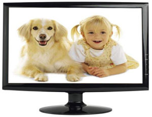 18.5inch LED Display Monitor/ Desktop Monitor/ OEM Monitor pictures & photos
