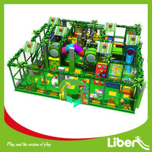 Interesting Indoor Playground with Jungle Gym pictures & photos