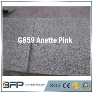 Pink/Grey/Black/Yellow/ Granite Tiles for Floor, Wall, Bathroom pictures & photos