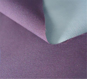 PU Coated Nylon Taslon Fabric for Garment (XSN-002) pictures & photos