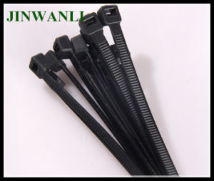 4.8*300mm Nylon 66 Self Locking Cable Tie pictures & photos