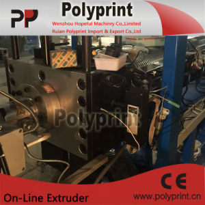 Plastic Sheet Extrusion Line (PPSJ-100A) pictures & photos