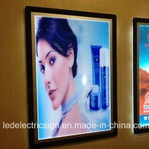 Acrylic Sheet LED Light Box for Cream Advertising Display pictures & photos