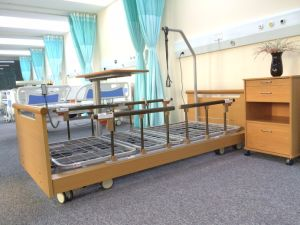 Three Function Electric Nursing Home Hospital Beds (AG-W002) pictures & photos