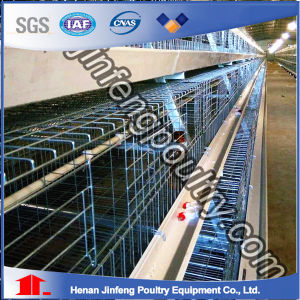 Supply Durable Chicken Layer Cage Used for Africa Farms pictures & photos