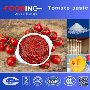 28-30% Brix Hot Break Tomato Paste pictures & photos