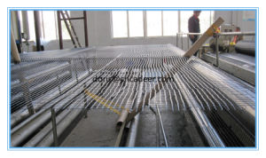 Construction Materials PP /Polyester/ Fiberglass Geogrid pictures & photos