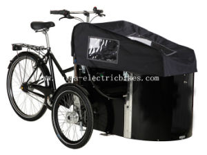 Denmark Cargo Bikes 4 Seat and Seatbelts (DT-037) pictures & photos