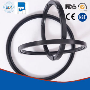 Rubber Covered Steel Case Spring Loaded Oil Seals pictures & photos