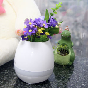 Wholesale Birthday Gift Indoor Touch Smart Mini Music Flowerpots LED Flower Pot with Colorful Lamp and Bluetooth Speaker pictures & photos