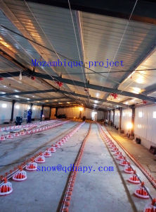 Automatic Equipment in Poultry House with Prefabricated Steel Structure Shed for One Stop pictures & photos