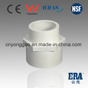 PVC Pressure Pipes Fittings Male Adaptor pictures & photos