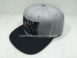 Custom Flat Brim Snapback Cap Writh 3D Embroidery Logo Design pictures & photos