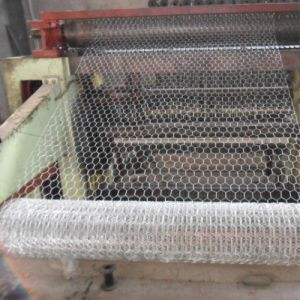 PVC Coated/Galvanized Hexagonal Wire Mesh pictures & photos
