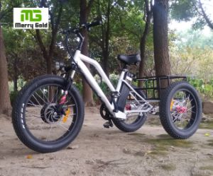 Three Wheel Fat Tire 500W Cargo Electric Trike pictures & photos