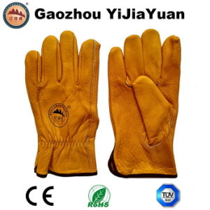 Top Grain Cowhide Leather Drivers Work Gloves pictures & photos