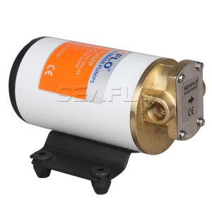 12V/24V DC Diesel Fuel Lifting Pump Gear Pump pictures & photos