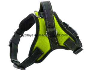 Big Dog Harness (YD631-6) pictures & photos