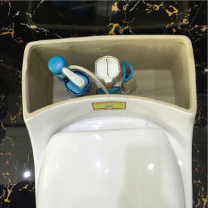 Ovs Low Water Tank Project One Piece Sanitary Ware Toilet pictures & photos