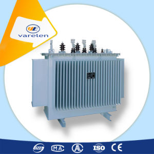 Oil Immersed Step Down Transformer pictures & photos
