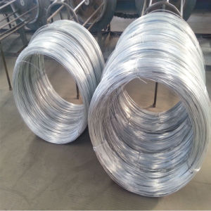 Gi Wire/Galvanized Wire From Tangshan Factory