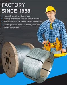 Guy Wire, Stay Wire, Steel Wire, Zinc-Coated Steel Wire, Stranded Galvanized Steel Wire (ASTM A 475) pictures & photos