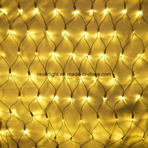 Holiday LED Warm White Net Light From Factory pictures & photos