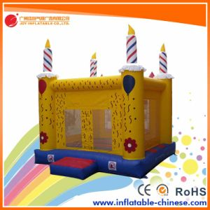 China Inflatable Bouncy Jumping Castle Bouncer for Amusement Park (T2-220) pictures & photos