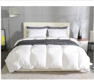 Super Soft Siberia Goose Down Comforter Duvet Quilt for Winter pictures & photos