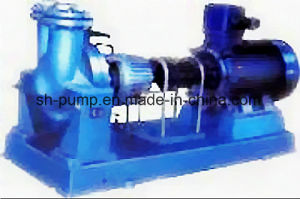 Y Series Petroleum Products Circulation Pump pictures & photos