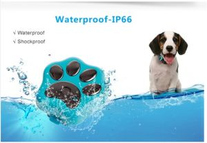 Mini Portable Waterproof Pet Tracker RF-V30 Smart WiFi Pet GPS Tracker IP66 Waterproof Collar Locator Safety Alarm for Dog Cat pictures & photos