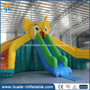 Inflatable Water Slide for Adult and Kids, Giant Water Slide, Inflatable Water Slide Parts