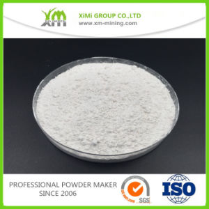 Natural Type Barium Sulphate Baso4 Powder pictures & photos